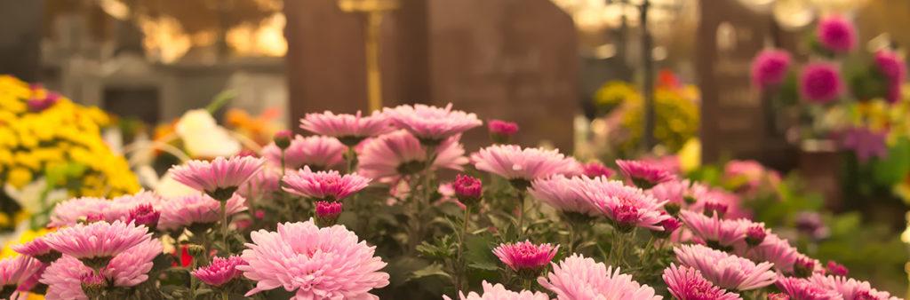 Rosa Blumen als Blumendekoration als Symbol für Erdbestattung in Hannover
